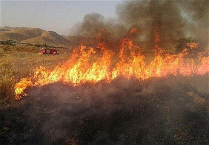آتش در کمین است، کشاورزان ورامینی مراقب باشند